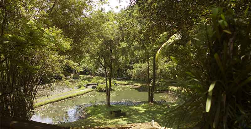 Southern Province Honeymoon Destinations - Geoffrey Bawa Gardens Bentota